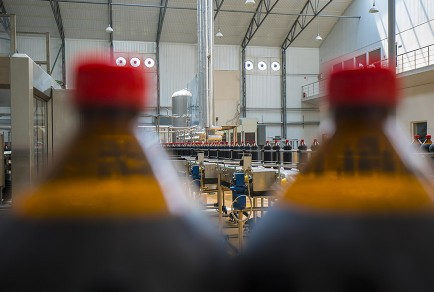 Industries TEC_Food And Beverage Plant Automation Capabilities