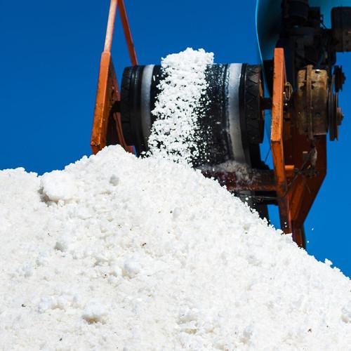 Case Study 2_Industrial Salt Facility Assessment_TEC 1
